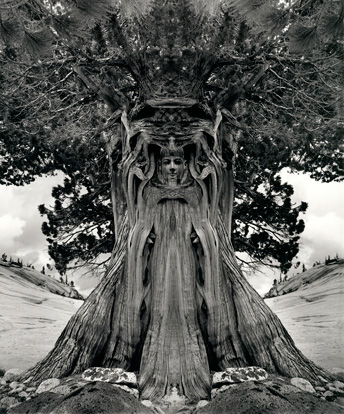 the life and work of jerry uelsmann a photographer Jerry uelsmann: a revitalized  confluence came about after a time of depression in the artist's life  uelsmann will continue to work in his studio and .
